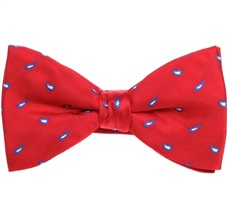 Red Bow Tie and Pocket Square with Blue Paisley