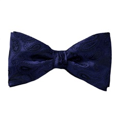 Blue Silk Bow Tie and Pocket Square with Paisley