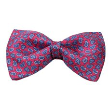 Red Silk Bow Tie and Pocket Square with Blue Paisley