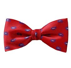 Red Silk Bow Tie and Pocket Square with Royal Blue Paisley